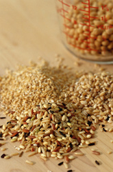 Picture of whole grains