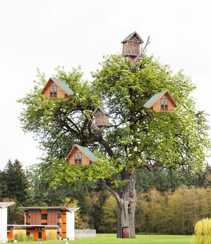 A tree house village is proposed for each campus.