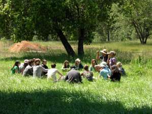 Students discussing in meadow