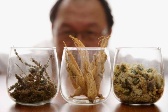 Man inspects three dried herbs in glasses