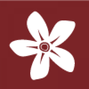 Two-tone icon of a flower