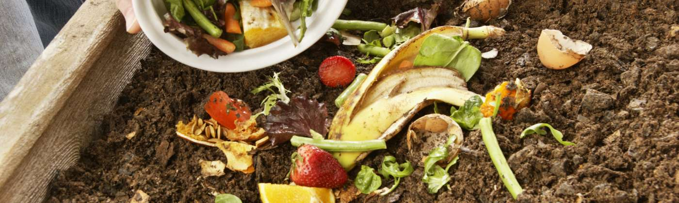 composting bin with produce scraps
