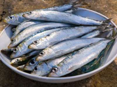 4 Reasons Sardines Are Great And 2 Recipes To Convince You
