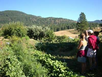 Students look at farmscape