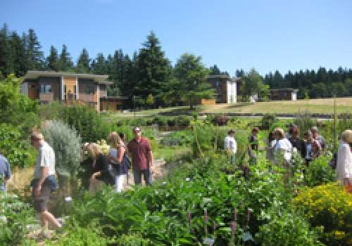 People walking through the bastyr garden with the student village as backdrop