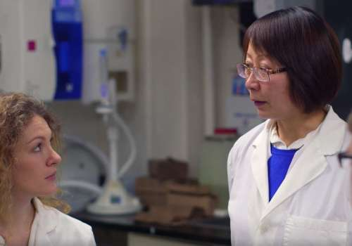 Dr. Jing Meng and her team of faculty and students