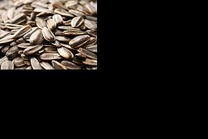Picture of sunflower seeds