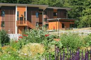 A view of the garden in the foreground, student village in the background.