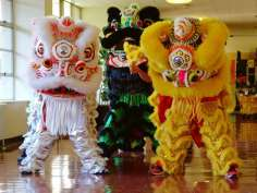 Chinese New Year lions in hallway