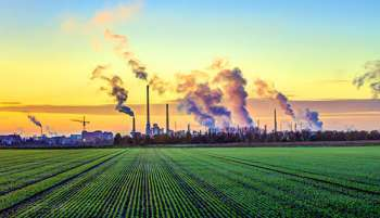 Chemicals in our environment are linked to myriad illnesses.