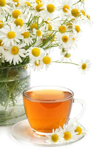 Chamomile flowers in a vase next to a tea cup