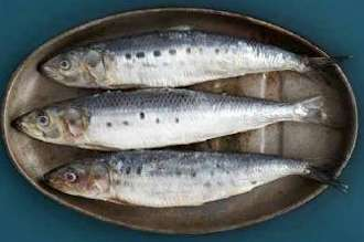 Three whole sardines on a metal dish.